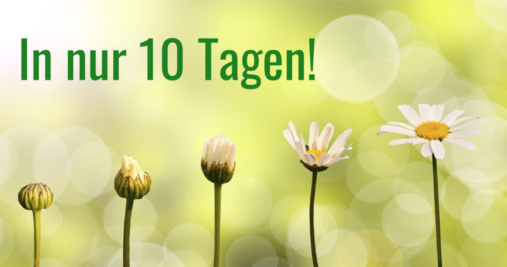 10-tage-transformation